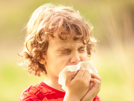 Allergy Relief - Sarasota Allergyst